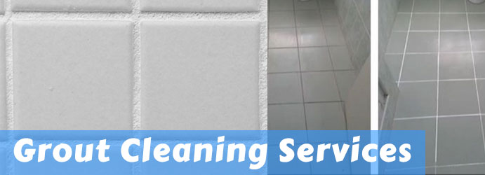 Grout Cleaning Services Wollemi