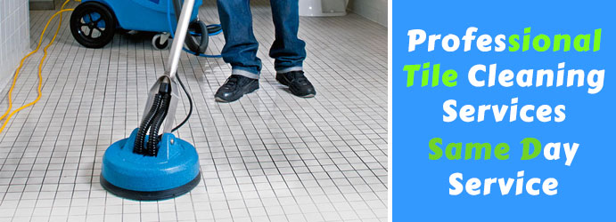 Best Tile and Grout Cleaning Royal Park
