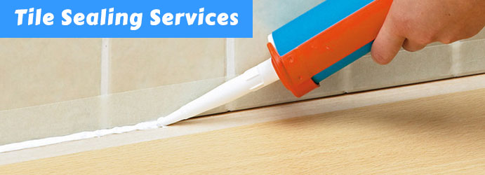 Best Tile and Grout Cleaning in  Glenvale