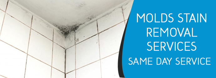 Remove Mould and Mildew From Tiles