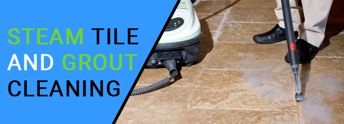 Steam Tile and Grout Cleaning