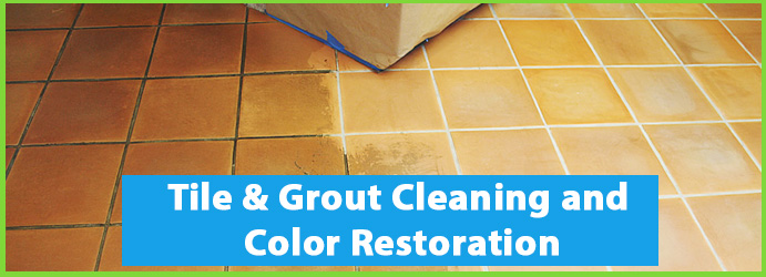 Grout Recoloring Service