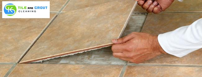 Professional Tile Repairing Services